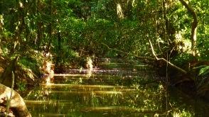 rio State Creek