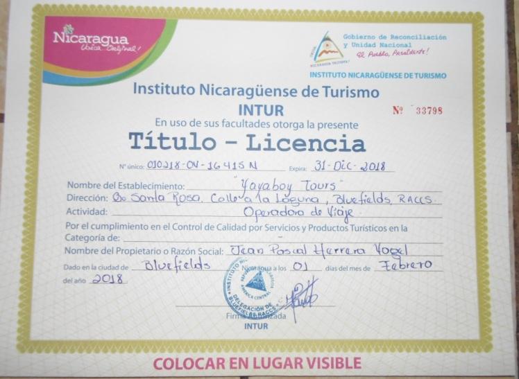 licencia intur